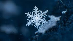 No two snowflakes are alike